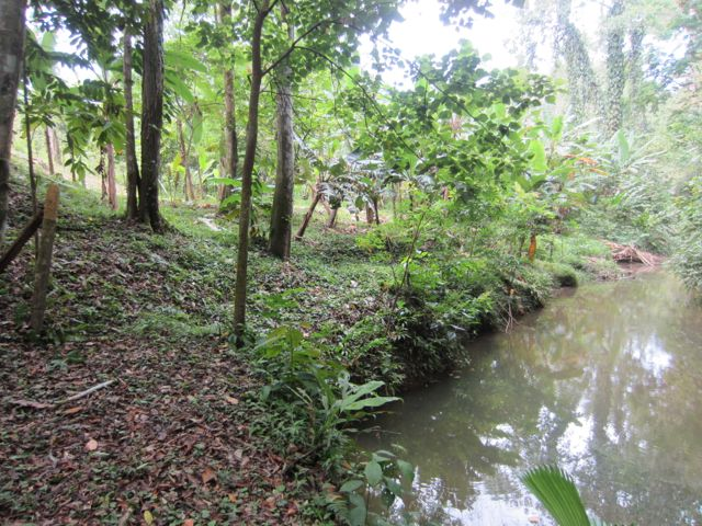 Affordable Riverfront Lot on Margarita Road